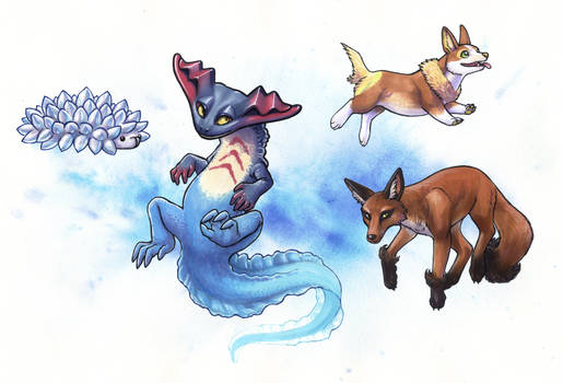 Pokemon - Galar Favourites part 1