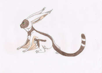 Avatar the Last Airbender favourites by breyercrazy on