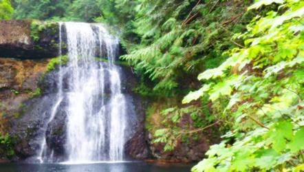 Lower North Falls Silverton OR
