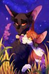 Surreal Twilight [Leafpool/Nightcloud OLD]