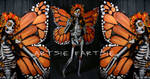 Monarch of mexico full body paint