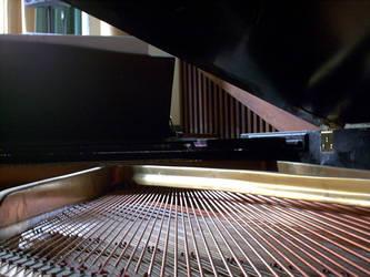Piano Strings by cannedlizard