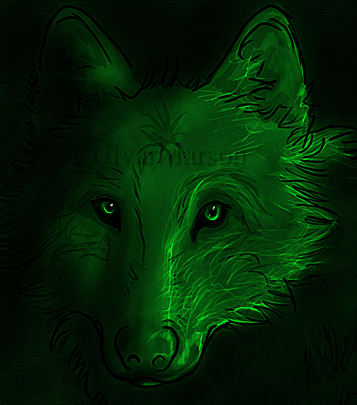 Image Result For Can A Wolf