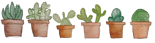 F2U | Cactus Plant Divider by UmieArt