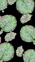 F2U | Plant Custom Box