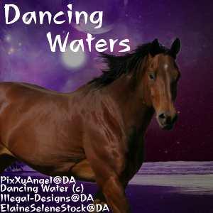 Dancing Waters by WildDogArt