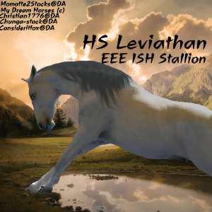HS Leviathan by WildDogArt