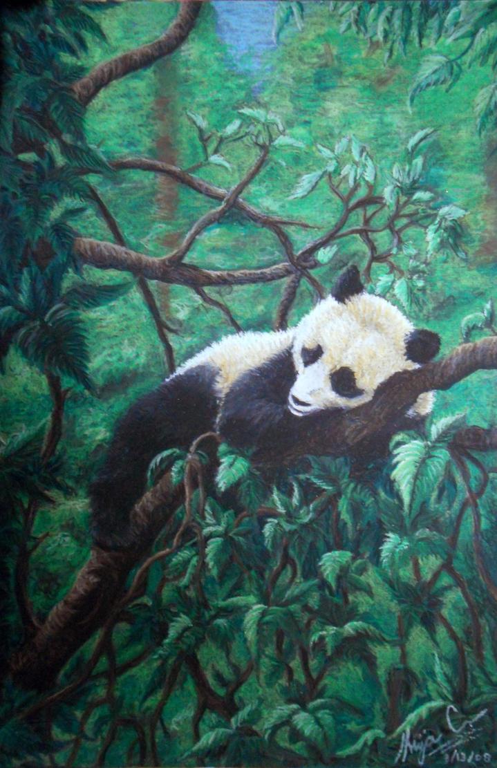 Napping Panda by Faeyne-Silvercloud