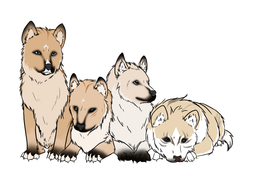 Toko Puppies by xValkyrja