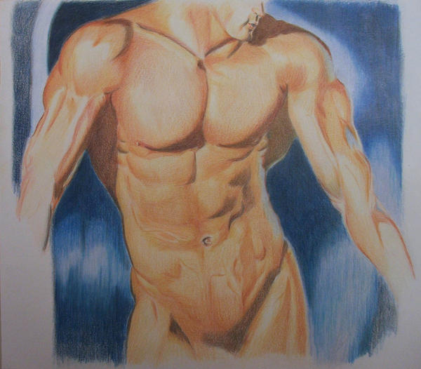 Male Torso by gemini-art on DeviantArt