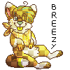 pixely breezy by Chargay