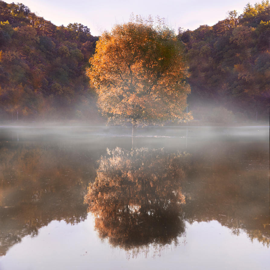 A Tree Grows In Brooklyn by ChlorineDream86