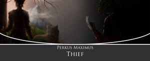 Official PerMa Thief Image