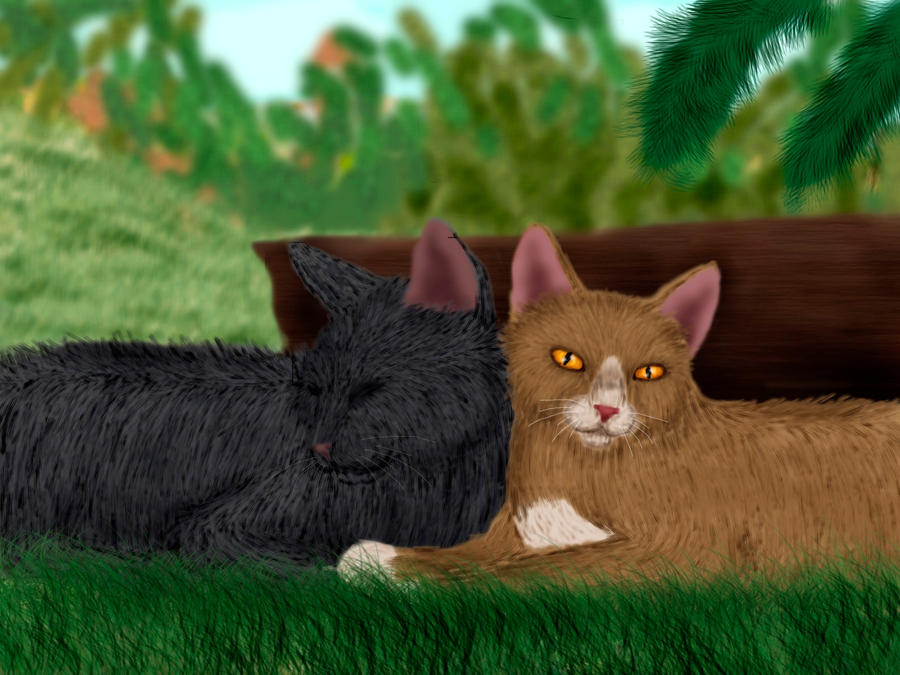 Leafpool and Crowfeather by Alisa222