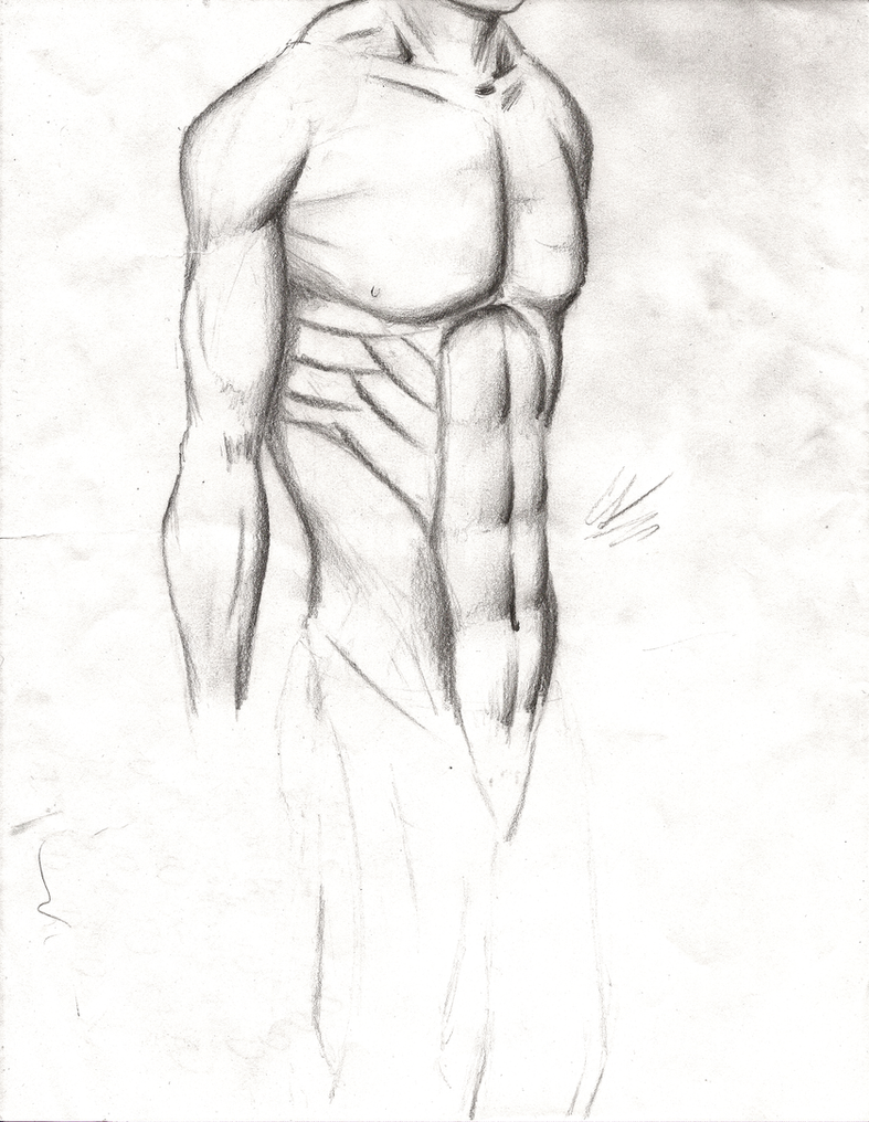 anatomy challenge by lilwarrior103