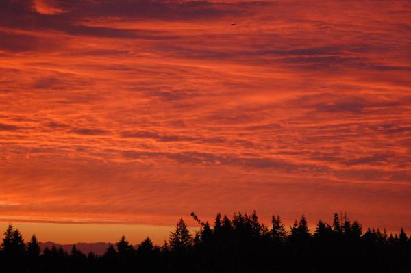Seattle sunrise 4 by Alegion-stock