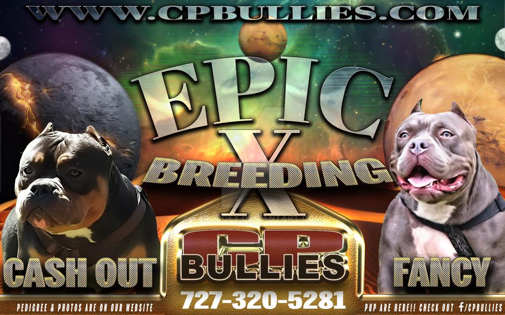 Epic-banner by FarosGFX