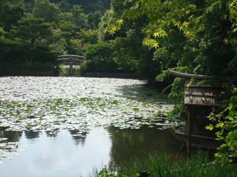 Reflection -kyoto 2010 by Flashpelt1