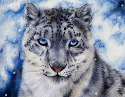 Snow Leopard by ManiaAdun