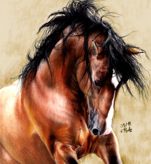 Horse by ManiaAdun
