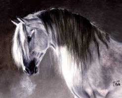 Horse II by ManiaAdun