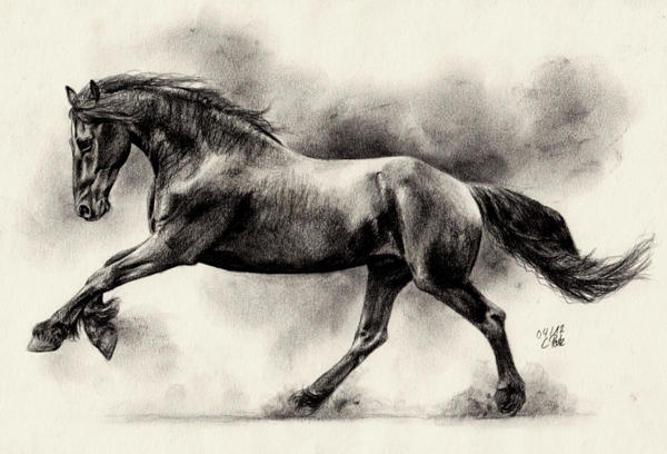 Friesian Horse II by ManiaAdun