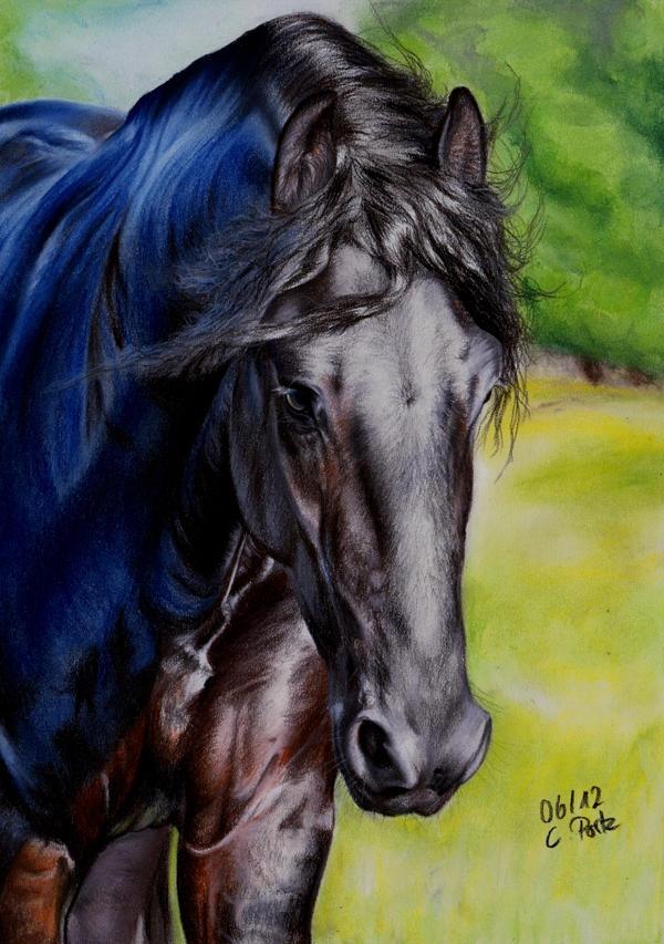 Friesian Horse III by ManiaAdun