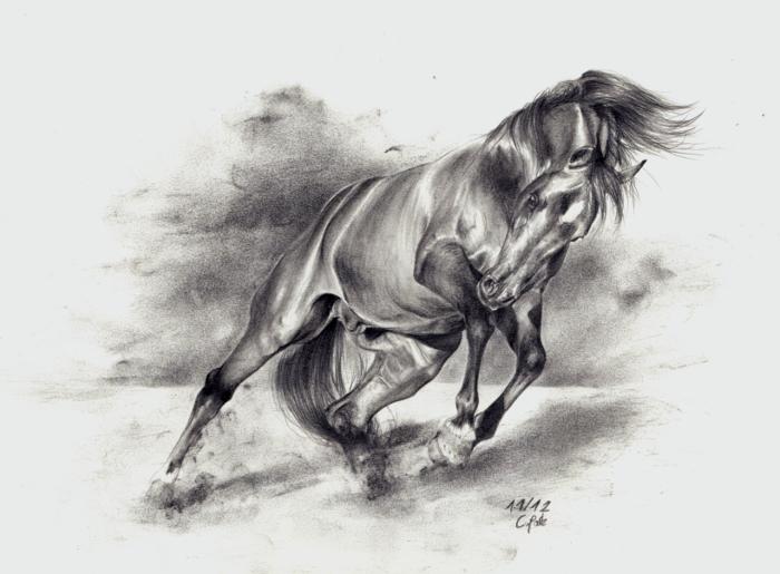 Horse III by ManiaAdun