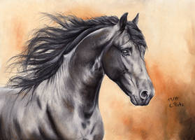 Friesian Horse IV Reupload by ManiaAdun
