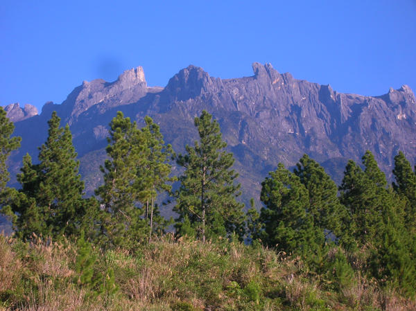 mount kinabalu at morning by cintha