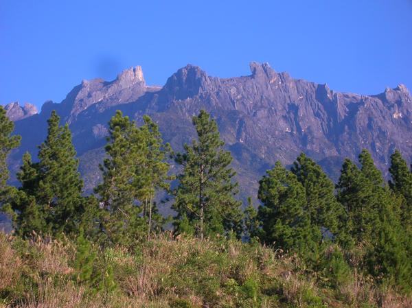 mount kinabalu at morning by cintha
