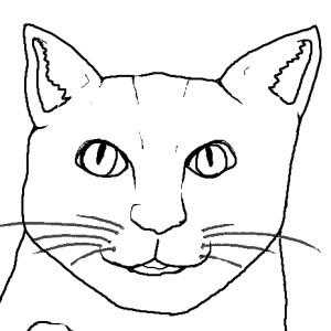 sherbet--head's Profile Picture