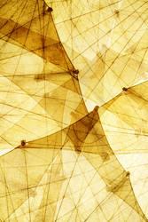 sails by stachelpferdchen