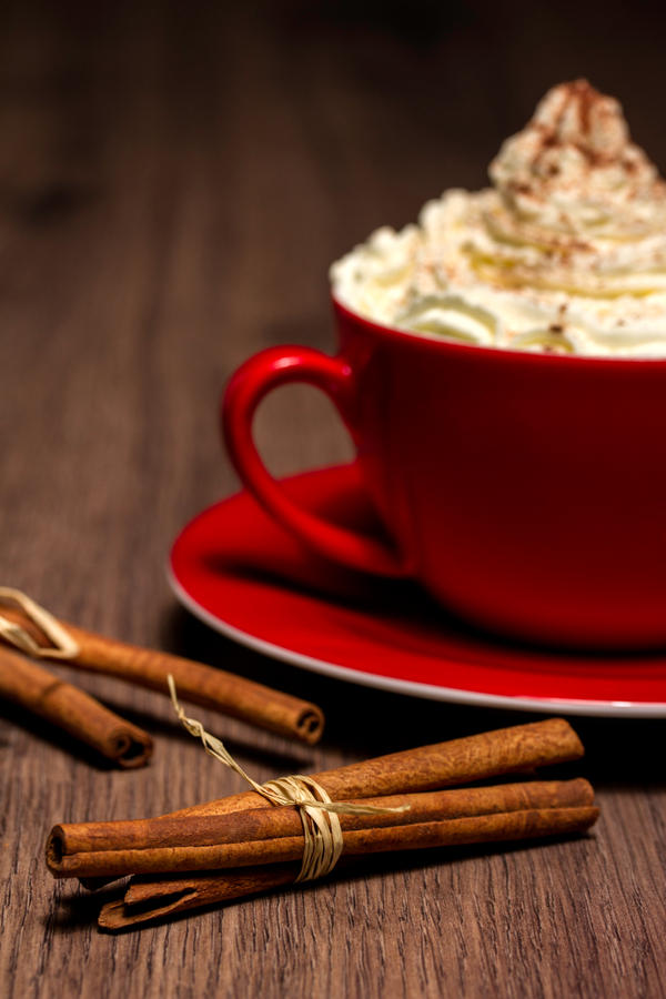 cinnamon cocoa by stachelpferdchen