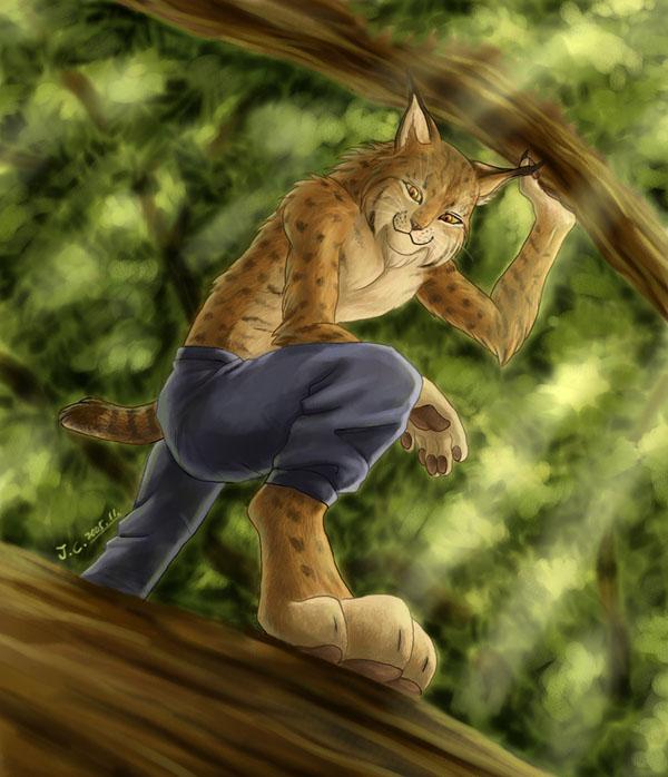 Anthro Lynx By J C by bluecharlye