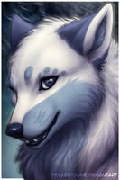 Winter the Wolf
