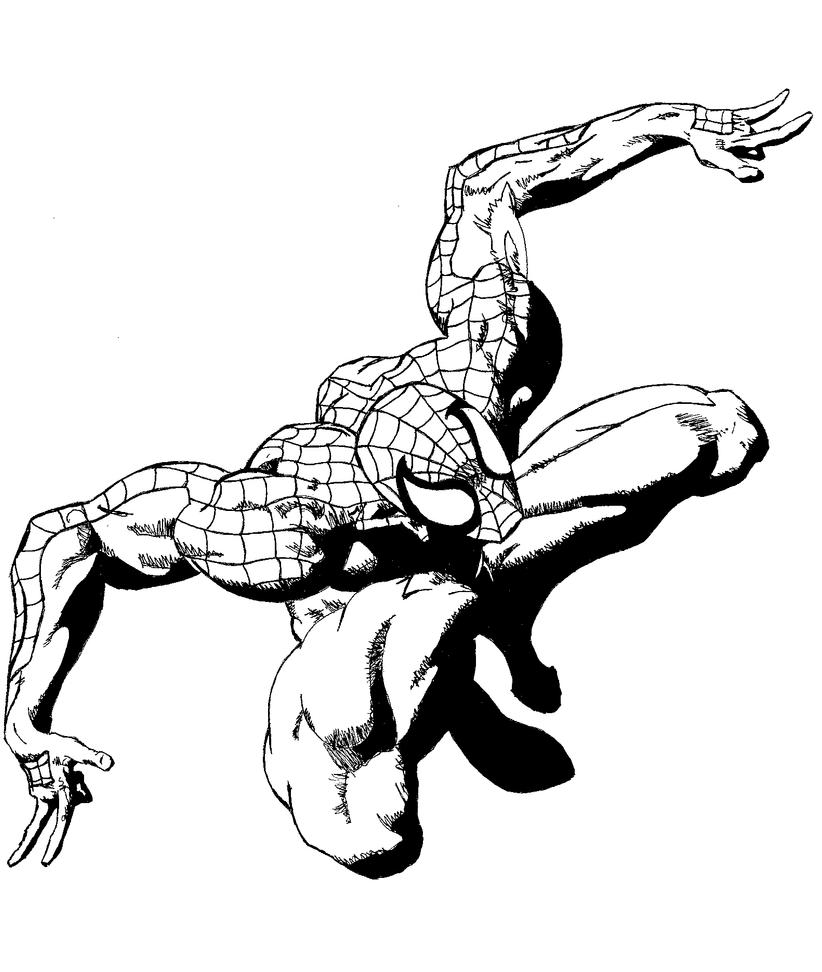 Line Art Marvel : Spiderman line art by pinora on deviantart