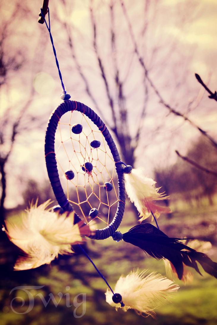Dreamcatcher By TwigsCorner On DeviantArt