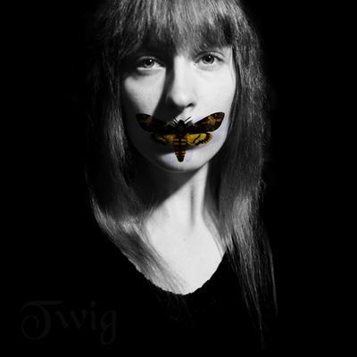 TwigsCorner's Profile Picture