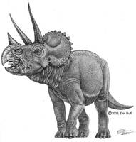 triceratops by erinruff