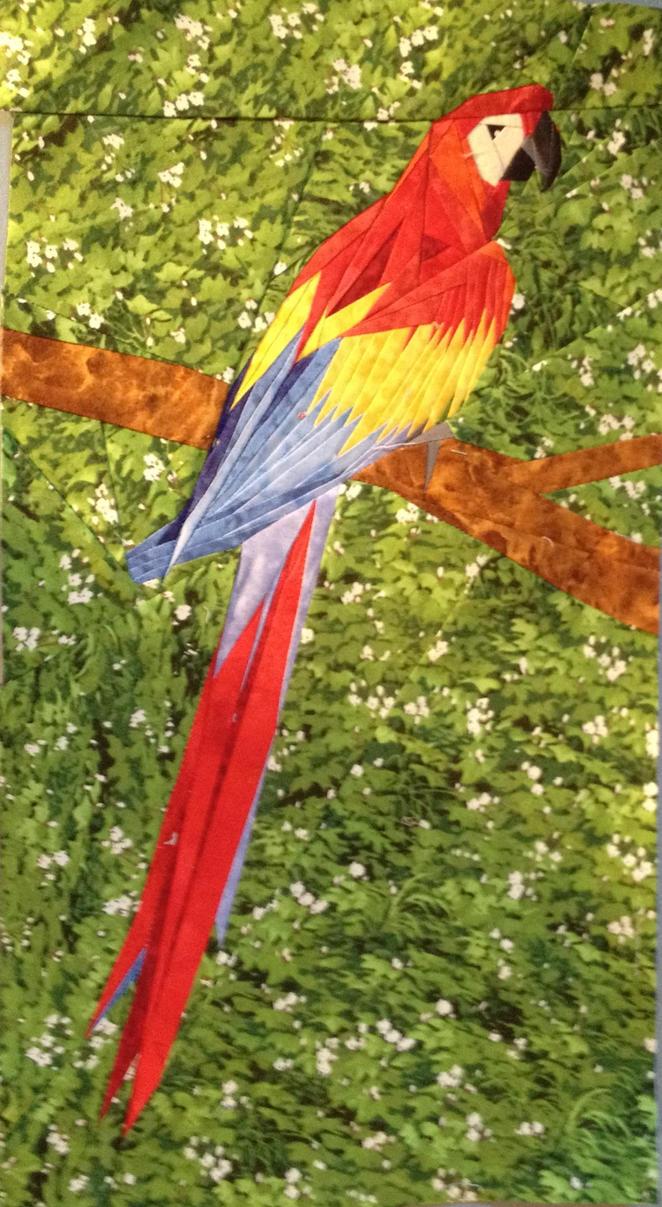 Scarlet Macaw by Stitchwich