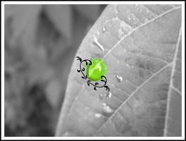 Leaf's tears v.2 by Lilylou
