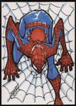 Superheroes 4 babies Spiderman by rantz