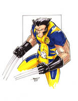 Commission Wolverine 4 black0 by rantz