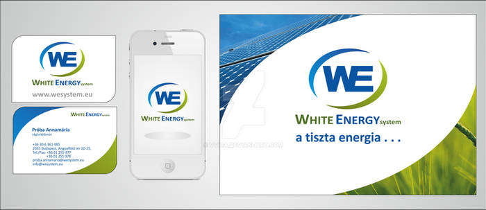 WE system design