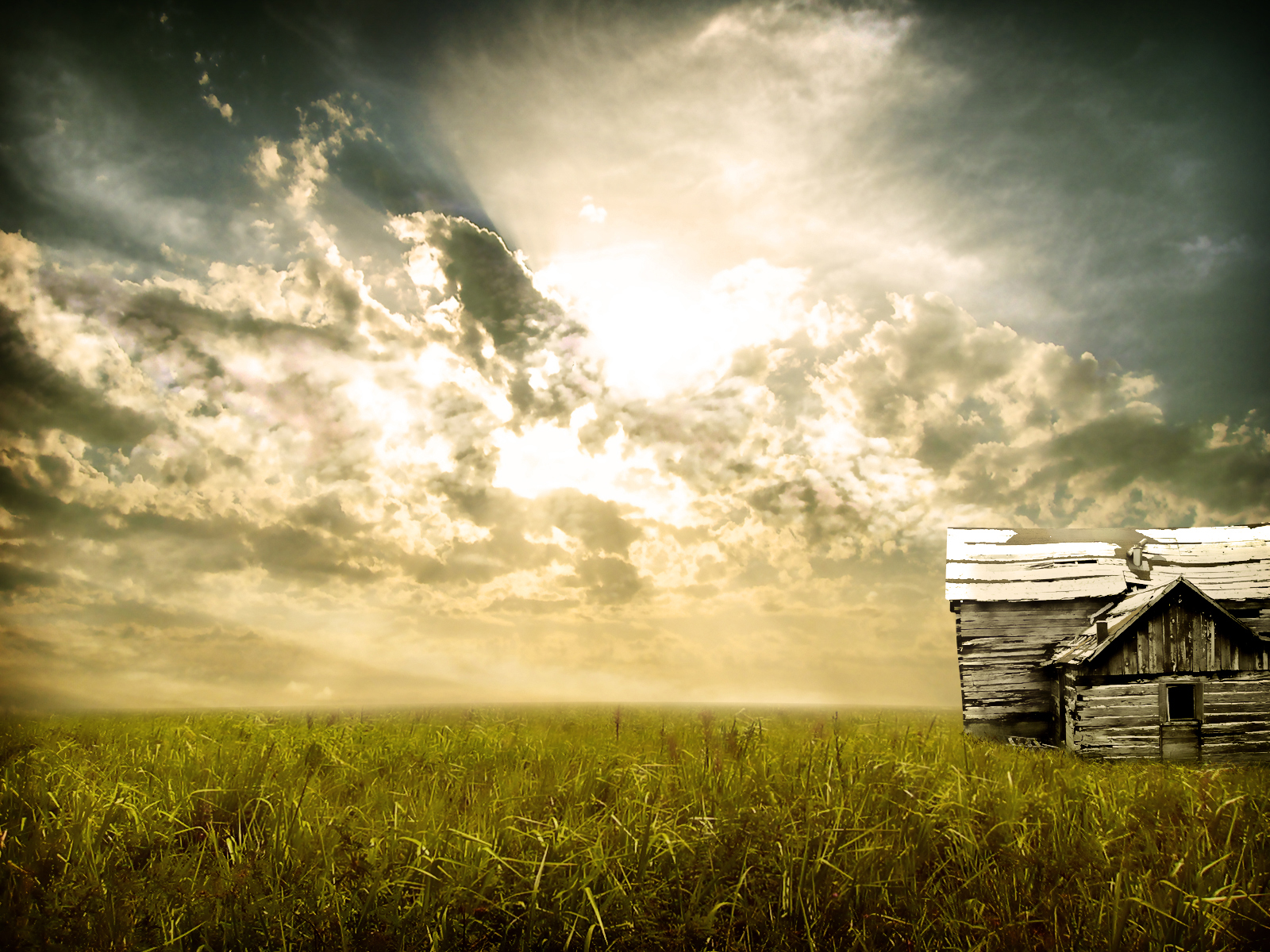 Field with abandoned house by dobee