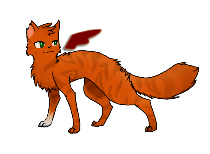 Warrior Cats Firefern
