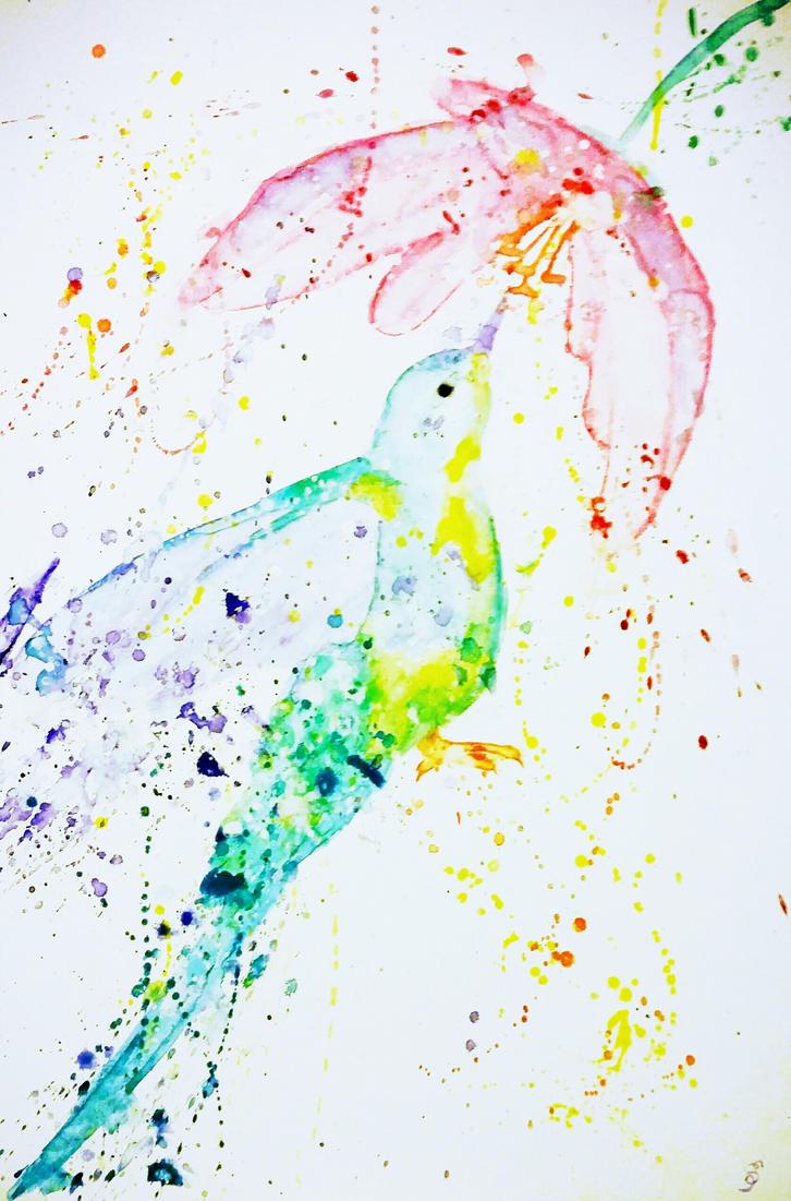 HummingBird Beauty by Sarah-Maxine