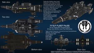 Terran Federation Battlecruiser Amagi Overview