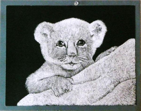 Lion Cub- Scratchart by MousieDoodles